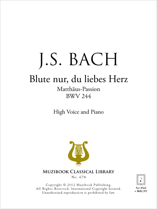Bach Blute Nur.pdf